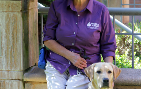 Guiding Eyes for the Blind trainers in Shepherdstown help puppies find their callings
