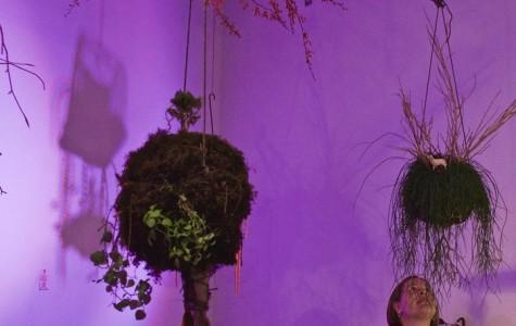 "Sonya Evanisko's ""Like Moss Between the Cracks"" Opening"
