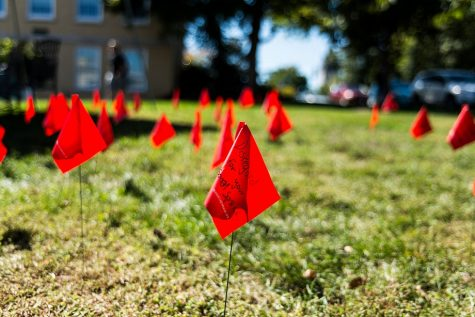 Flags will be displayed to show how prevalent dating violence is.