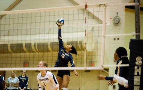 Volleyball Defeated to End the Home Stand